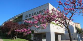 Institut El Calamot.
