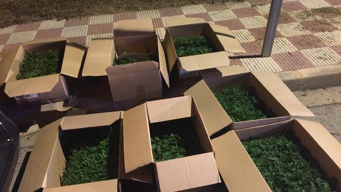 Imagen distribuida por los Mossos d'Esquadra de las siete cajas de marihuana decomisadas en una furgoneta en Quart (Gironès).