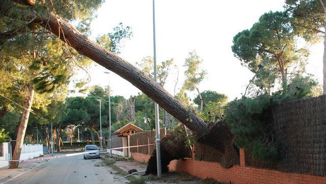 Daños por el viento en Gavà Mar en temporales pasados. Foto gavamar.com.