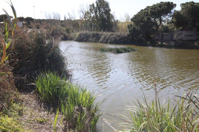 Estany de la Murtra. Foto: Ayuntamiento de Gavà.