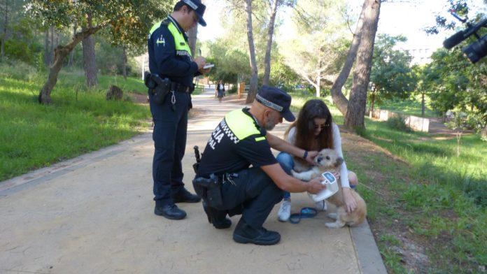 Agentes de la Policía Local de Gavà durante anteriores campañas. Foto: Ayuntamiento de Gavà.