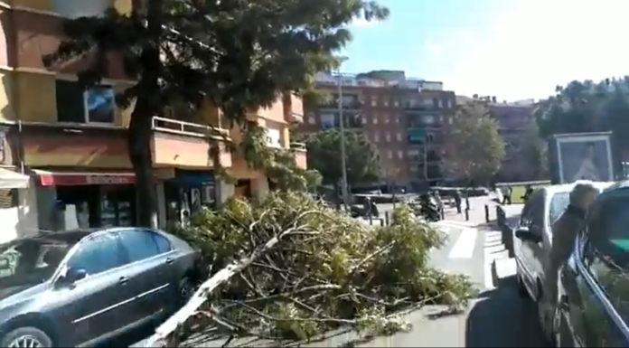 Avenida Diagonal. Foto: Twitter @GTvNoticies.
