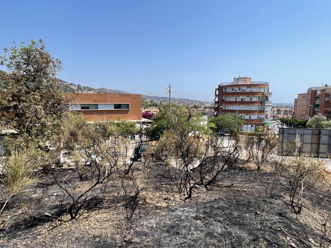 Zona afectada por el incendio.